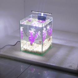 Bể cá mini để bàn 15x15x20 + Đèn Led