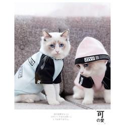 GIẢM GIÁ Quần áo cho chó mèo áo 2 chân có mũ hàng đẹp