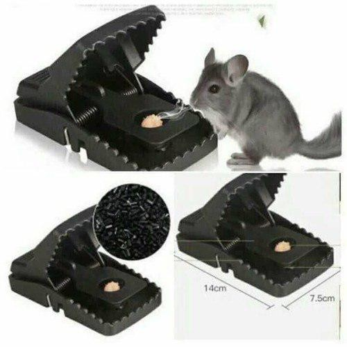 Kẹp bẫy chuột thông minh hiện đại hiệu quả