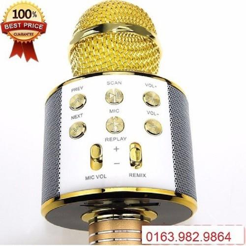 Micro hát karaoke ws 858