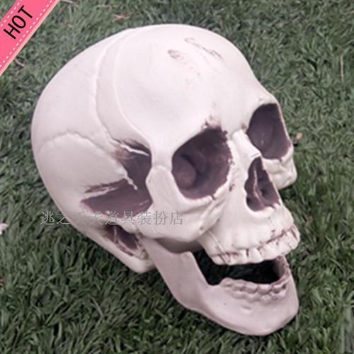 Đầu lâu trang trí halloween