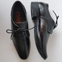 Giày Tây Nam Buộc Dây Da Bò Thật Vân Cá Sấu Cao Cấp GT495