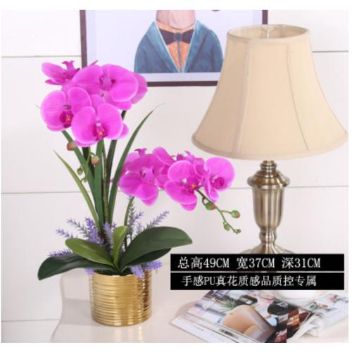 Bình hoa lan giả trang trí nội thất phòng khách sang trọng - 19950374 , 25132542 , 15_25132542 , 690000 , Binh-hoa-lan-gia-trang-tri-noi-that-phong-khach-sang-trong-15_25132542 , sendo.vn , Bình hoa lan giả trang trí nội thất phòng khách sang trọng