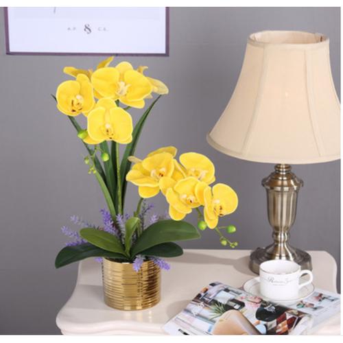 Bình hoa lan giả trang trí nội thất phòng khách sang trọng - 19950382 , 25132550 , 15_25132550 , 690000 , Binh-hoa-lan-gia-trang-tri-noi-that-phong-khach-sang-trong-15_25132550 , sendo.vn , Bình hoa lan giả trang trí nội thất phòng khách sang trọng