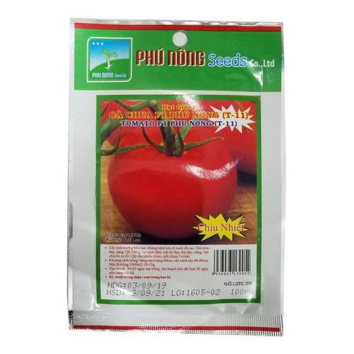 Hạt giống cà chua f1 | cà chua phú nông