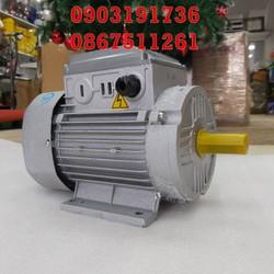 Động cơ điện 1.5KW- Motor điện 2HP Toàn Phát chất lượng cao