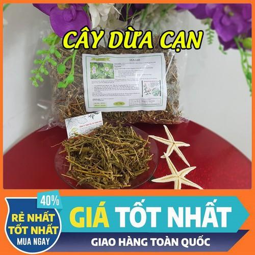 Cây dừa cạn chữa ung thư - hàng chất lượng - 1kg - 20059612 , 25264328 , 15_25264328 , 80000 , Cay-dua-can-chua-ung-thu-hang-chat-luong-1kg-15_25264328 , sendo.vn , Cây dừa cạn chữa ung thư - hàng chất lượng - 1kg