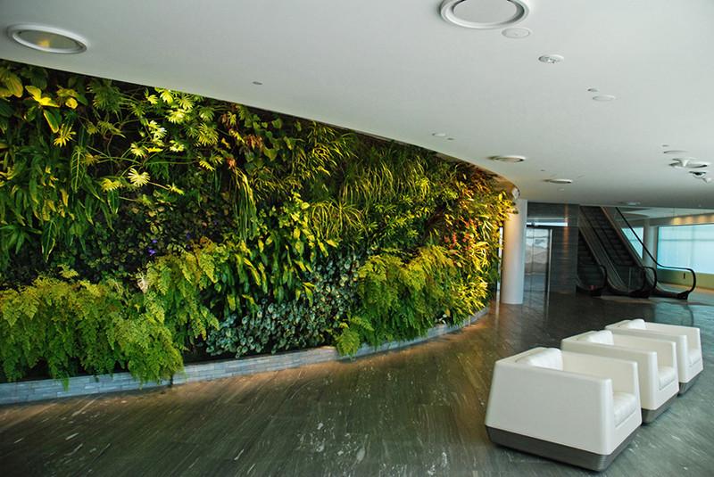 Bộ chậu vườn đứng Holo Cell 200VG trang trí văn phòng