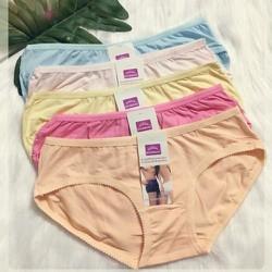 Bộ 10 quần lót nữ thun cotton trơn thanh lịch