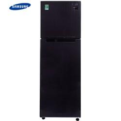 Tủ lạnh Samsung Inverter 256 lít RT25M4033UT-SV
