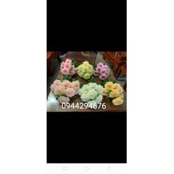 cụm hồng xoăn 9 bông