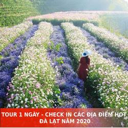 TOUR 1 NGÀY - CHECK IN CÁC ĐỊA ĐIỂM HOT Ở ĐÀ LẠT