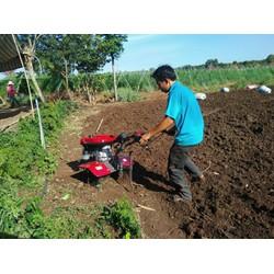 Máy xới đất đa năng, máy làm đất đa năng oshima xdx1-c