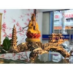 Lũa – Gốm Phật Thiền - Trang Trí Nhà Cửa - Đá & Gỗ A2VINA - G24