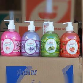 combo 2 chai Nước rửa tay kháng khuẩn Familife 500ml giao màu ngẫu nhiên - ALISABEC8888