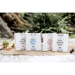 Combo 2 hộp bột lá nhuộm tóc thảo dược Ogatic các màu - ĐEN, NÂU, NÂU ĐỎ, XANH ĐEN - Sản phẩm từ thảo dược thiên nhiên, không hóa chất
