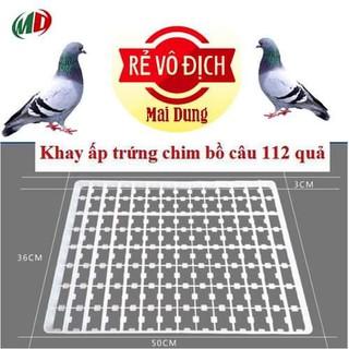 combo 10 cái - khay ấp trứng bồ câu - 800 thumbnail