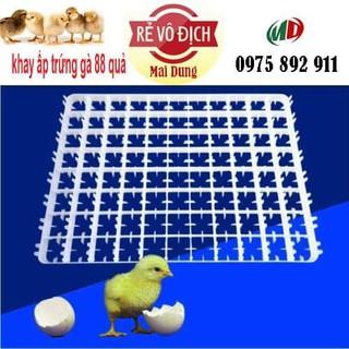 combo 10 cái - khay ấp trứng gà 88 quả - 880 thumbnail