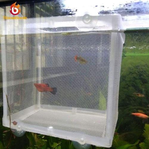 Lồng lưới hình vuông dùng nhốt cá - cách ly cá
