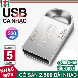 USB 32G nghe nhạc chất lượng cao cho xe hơi gồm 2500 bài nhạc mp3 320Kps + 200 nhạc hình DIXV