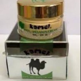 Kem dưỡng da ngừa nám Kamel xanh - 012
