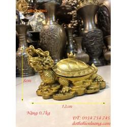 Long Quy Nắp Mai Mở - Rùa Đầu Rồng