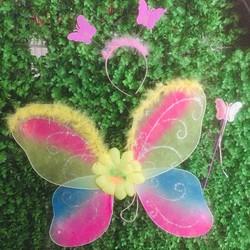 Bộ hóa trang cánh bướm