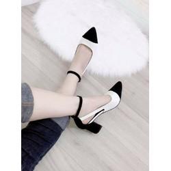 giày big size nữ đế vuông  size lớn  40 41 42 43