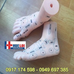 Mô hình huyệt vị bàn chân (Túc châm)