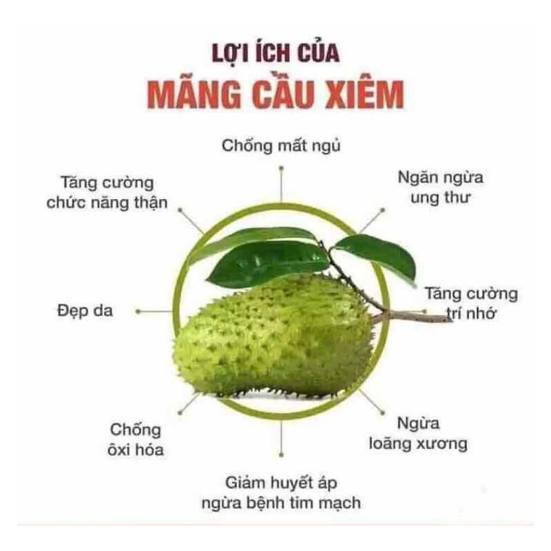 trà mãng cầu xiêm (1 kg) – 1 kg trà mãng cầu