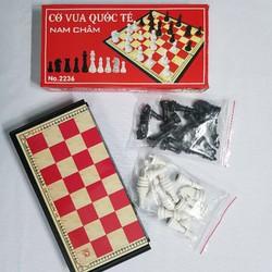 Bộ cờ vua nam châm