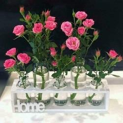 lọ hoa thủy tinh để bàn