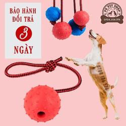 Đồ Chơi Cho Chó Bóng Cao Su Có Dây - PG Pet Shop - PK76