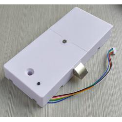 Bộ khóa từ giải mã cảm biến vân tay R302