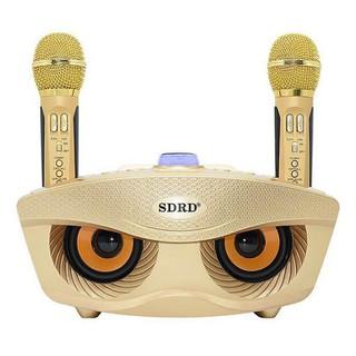 Loa Bluetooth hát Karaoke SD-306 - SD-306 thumbnail