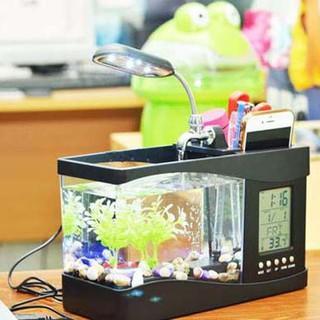 bể cá - bể cá mini - 0011 thumbnail