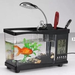 bể cá cảnh mini - bể cá cảnh mini sử dụng nguồn usb - 0012 thumbnail