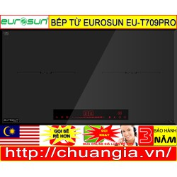 Bếp Từ Eurosuns EU T709PRO