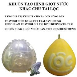 [GIAO NHANH 3H HCM] Khuôn tạo hình giọt nước khắc chữ Tài Lộc 16.5cm x16.5cm, 18.5cm x 18.5cm