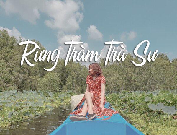 Trọn bộ kinh nghiệm du lịch rừng tràm Trà Sư - An Giang