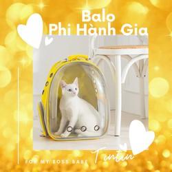 Balo Phi Hành Gia Trong Suốt Vận Chuyển Chó Mèo Kèm Thảm Lót [ĐƯỢC KIỂM HÀNG] 23238546