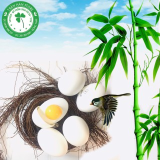 Gel tẩy da chết Holika Holika Smooth Egg Skin Peeling Gel - HOLIKA TRỨNG TRẮNG thumbnail