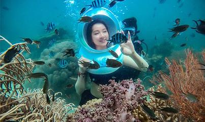 Trải nghiệm đi bộ dưới đáy biển ngắm san hô ở Phú Quốc - VnExpress ...