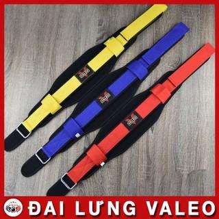 Đai lưng tập gym VALEO 2 báng - DVL234 thumbnail