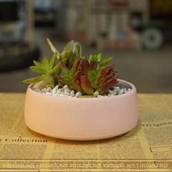 Chậu sứ thấp Bát Tràng trồng cây mix sen đá, xương rồng, cây cảnh để bàn đường kính 13-17cm – Chậu nhỏ 13x6cm