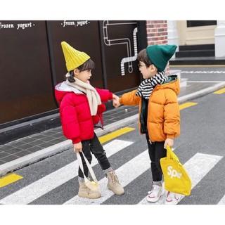 Áo phao 3 lớp dành cho bé trai và bé gái. Chất liệu bông mềm nhẹ, ấm áp - áo phao 3 lớp thumbnail