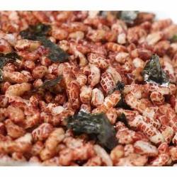 2.5 kg gạo lức sấy rong biển ngon