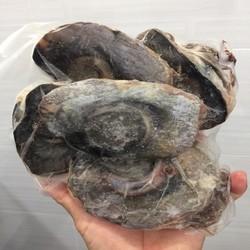 Mắt Cá Ngừ 1kg - CHỈ GIAO TRONG NỘI THÀNH TPHCM