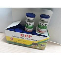 lên giống,kích dục tố,tăng đậu thai, động dục gia súc ECP 2lọ