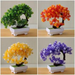 chậu hoa bonsai để bàn - BS 001 thumbnail